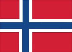 Norsk flag lille